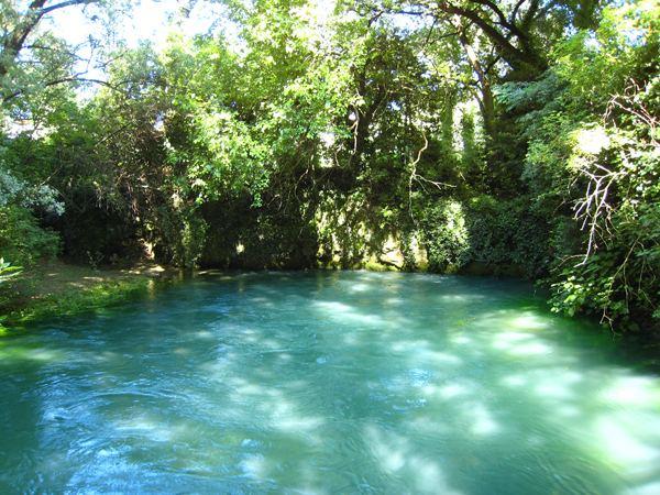 WHERE THE TIMAVO FLOWS